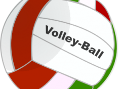 Anonymous-Volleyball-1-300px